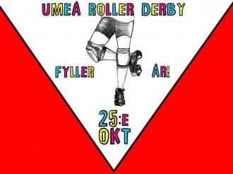 1412959872-3-rollerderby-lulea--10549005_10152403341933354_805540121194463069_o